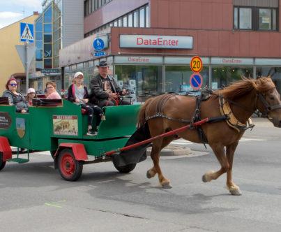 Ralli-hevonen vetää vankkureita Kauppakadulla.